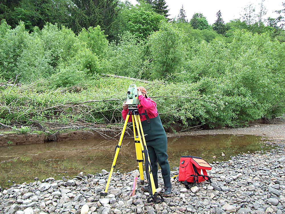 Grey's River Transect Survey
